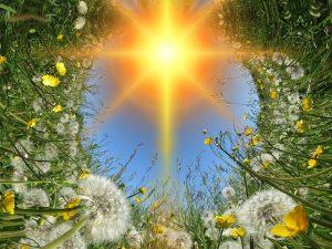 Pilgerfahrt zum Herzweg des Friedens