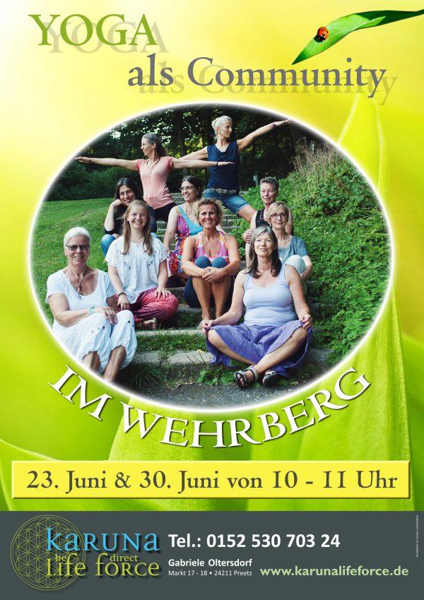 Diesen und nächsten Sonntag  – Yoga im Wehrberg